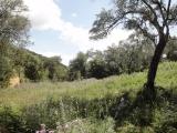 Land in Gouvia