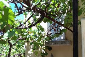 Μονοκατοικία στο Γαστούρι