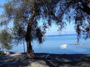 Παραθαλάσσια έκταση στη Νότια Κέρκυρα