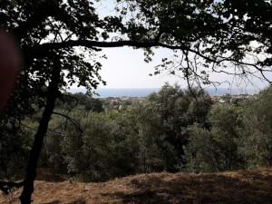 Οικόπεδο στην Αχαράβη